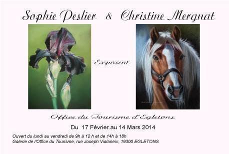 Exposition de pastels avec Sophie Peslier
