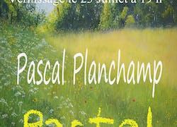 Exposition de pastels de l'artiste Pascal Planchamp
