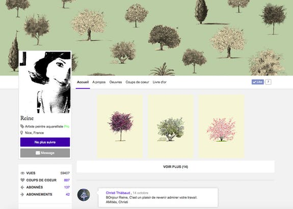 New on ArtQuid: customize your gallery like on Facebook or Twitter