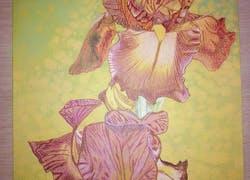 Venez découvrir mon univers du dessin sur mon blog skyrock