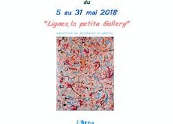 A Saint-Lô exposition «Lignes, la petite Gallery»