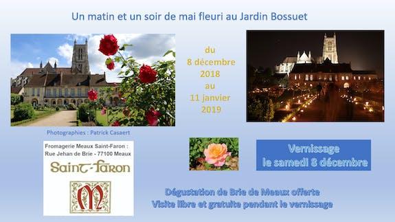 Un matin et un soir de mai fleuri au Jardin Bossuet à Meaux
