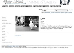 13Th Black & White Spider Awards