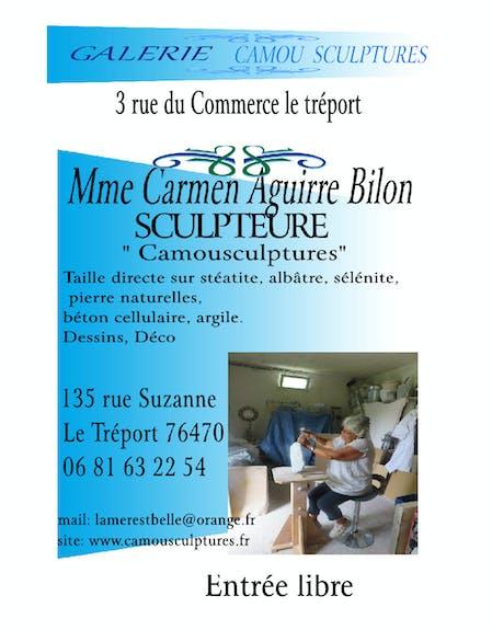 Galerie camousculptures