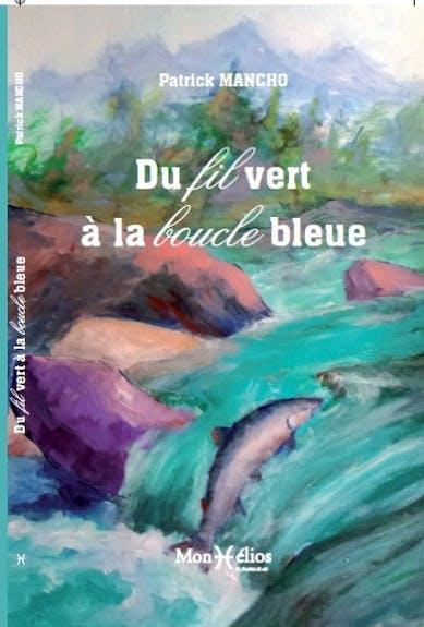 Du fil vert à la boucle bleue (roman)