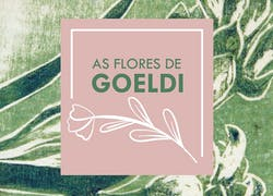 Exhibition: The Goeldi´s Flowers