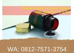 Order wa: 0812-7571-3754, Agen Bio Nerve Batam